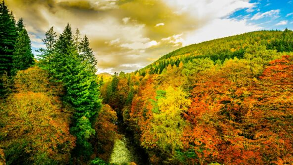 Autumnal overture in Perthshire